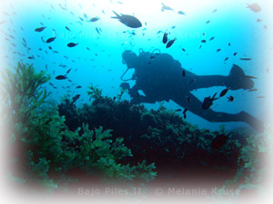 buceo-mar-menor